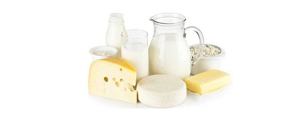dairy-product-manufacturing-mini-plant