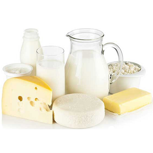 dairy-product-manufacturing-miniplant